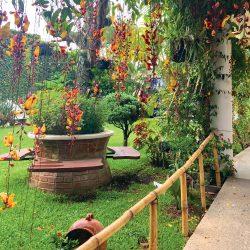SEMILLA Casa Emaús Garden, Guatemala City, Guatemala